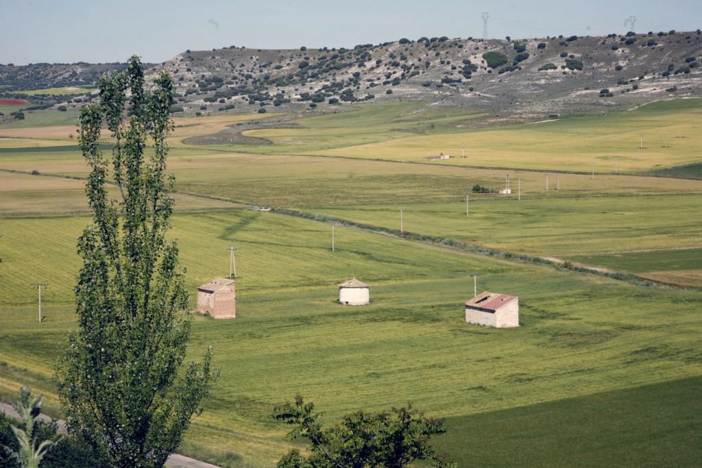 Castrillo de Onielo paisaje